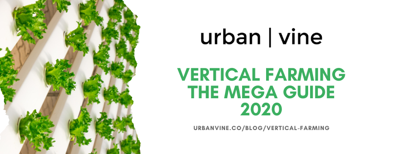 A crash course in vertical farming and how it works