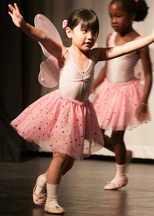 Fairytale Ballet Show Photo