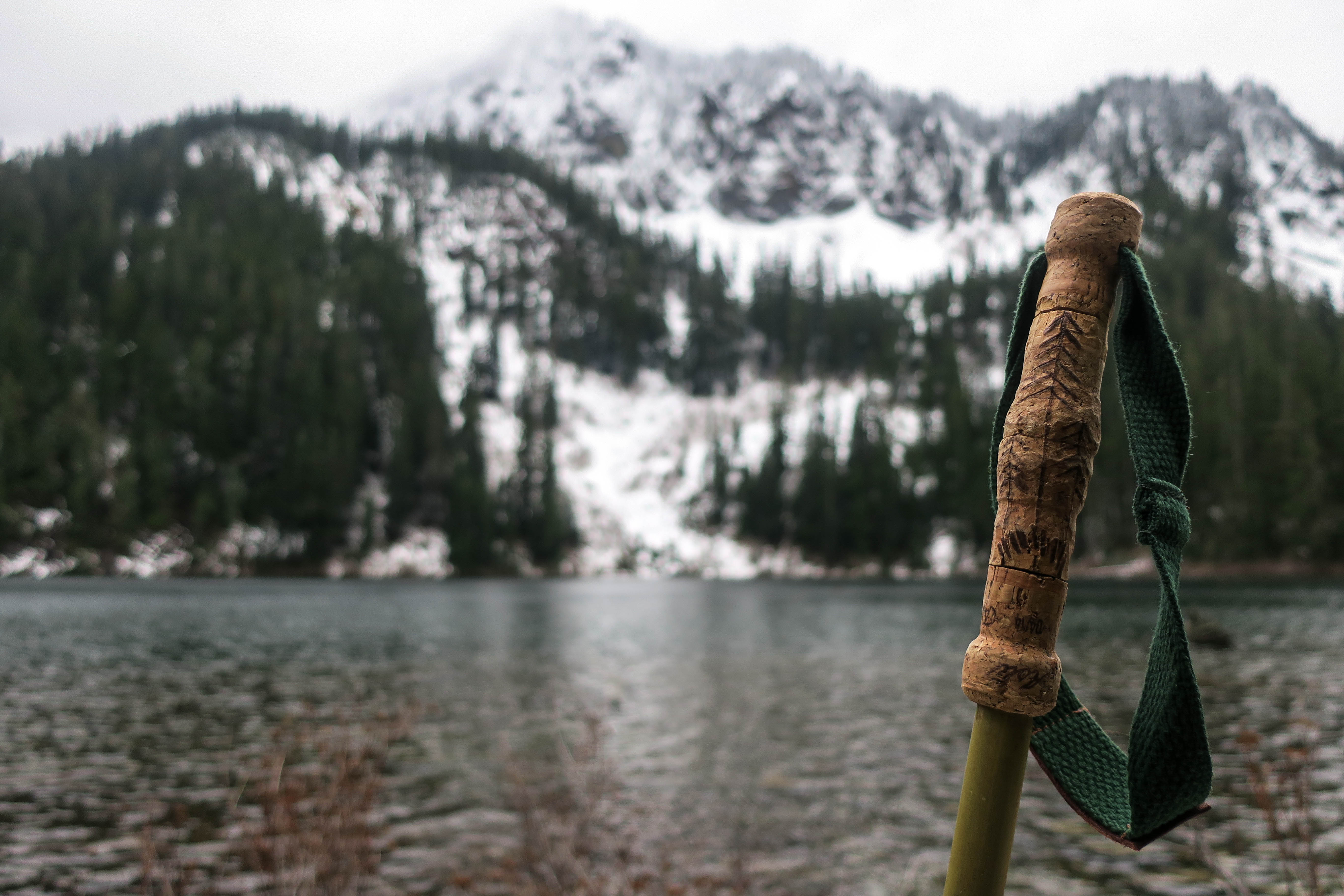 Uphill Designs - Alpine bamboo and cork trekking poles - in nature