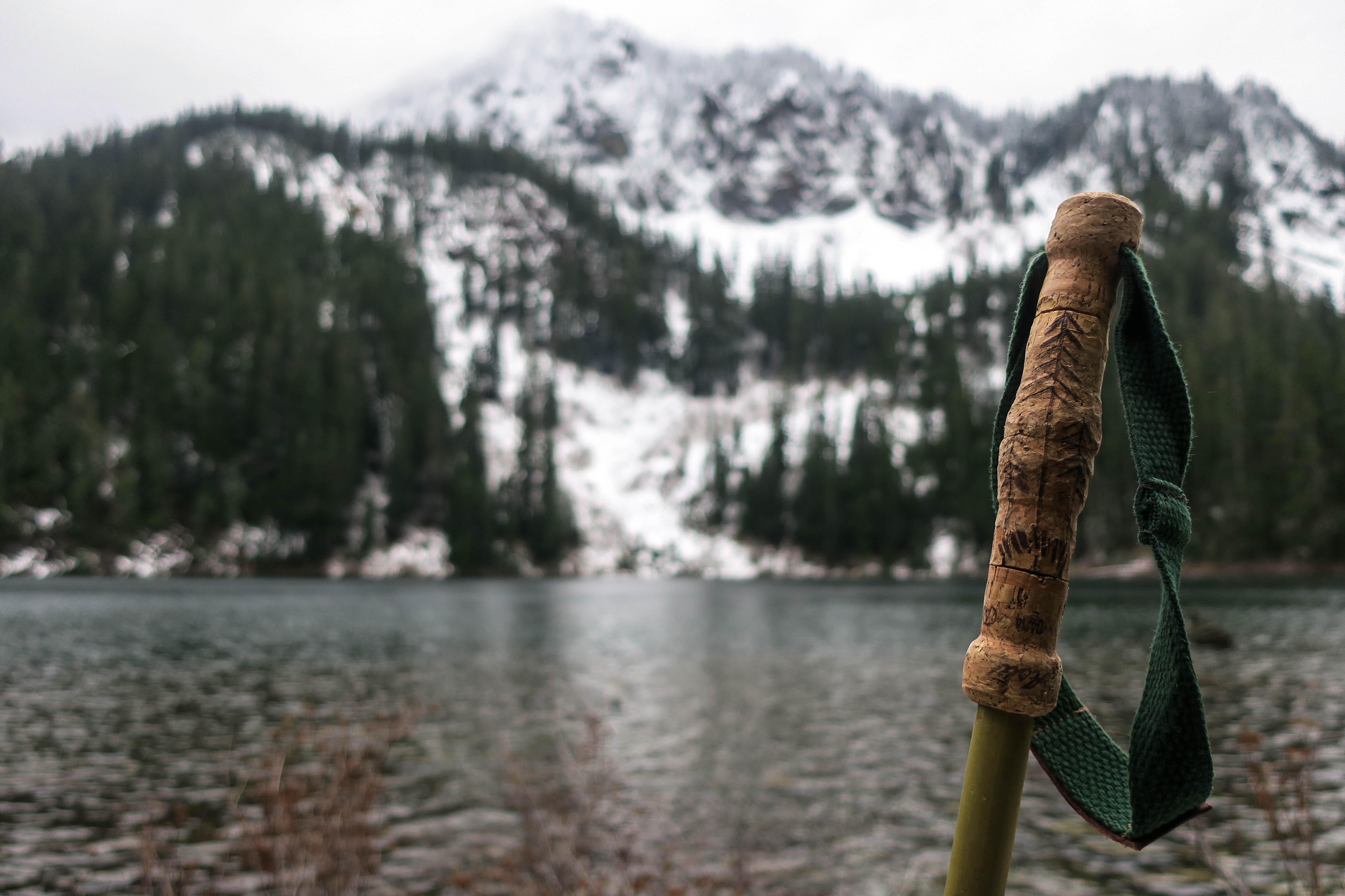 Uphill Designs - Alpine bamboo and cork trekking poles - in nature