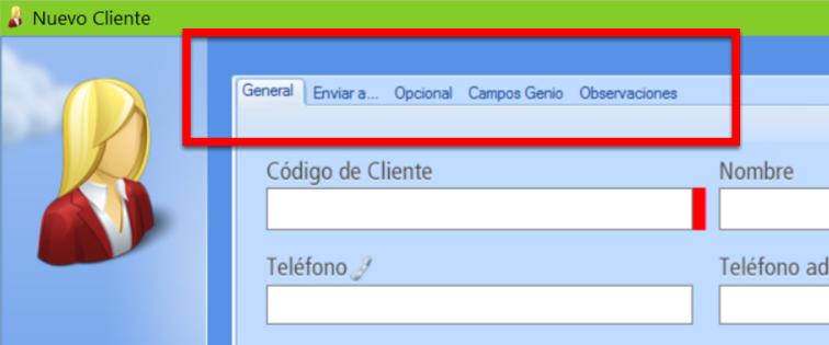 El registro de un cliente se organiza en pesta帽as con campos para completar datos