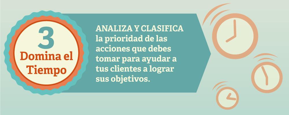 Analiza y clasifica