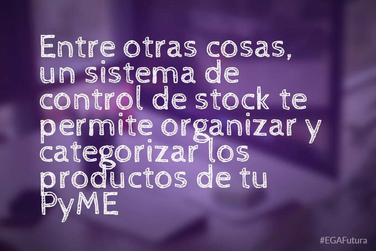 Entre otras cosas, un sistema de control de stock te permite organizar y categorizar los productos de tu PyME
