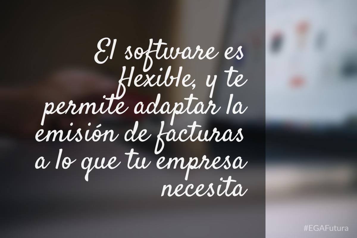 El software es flexible, y te permite adaptar la emisi贸n de facturas a lo que tu empresa necesita