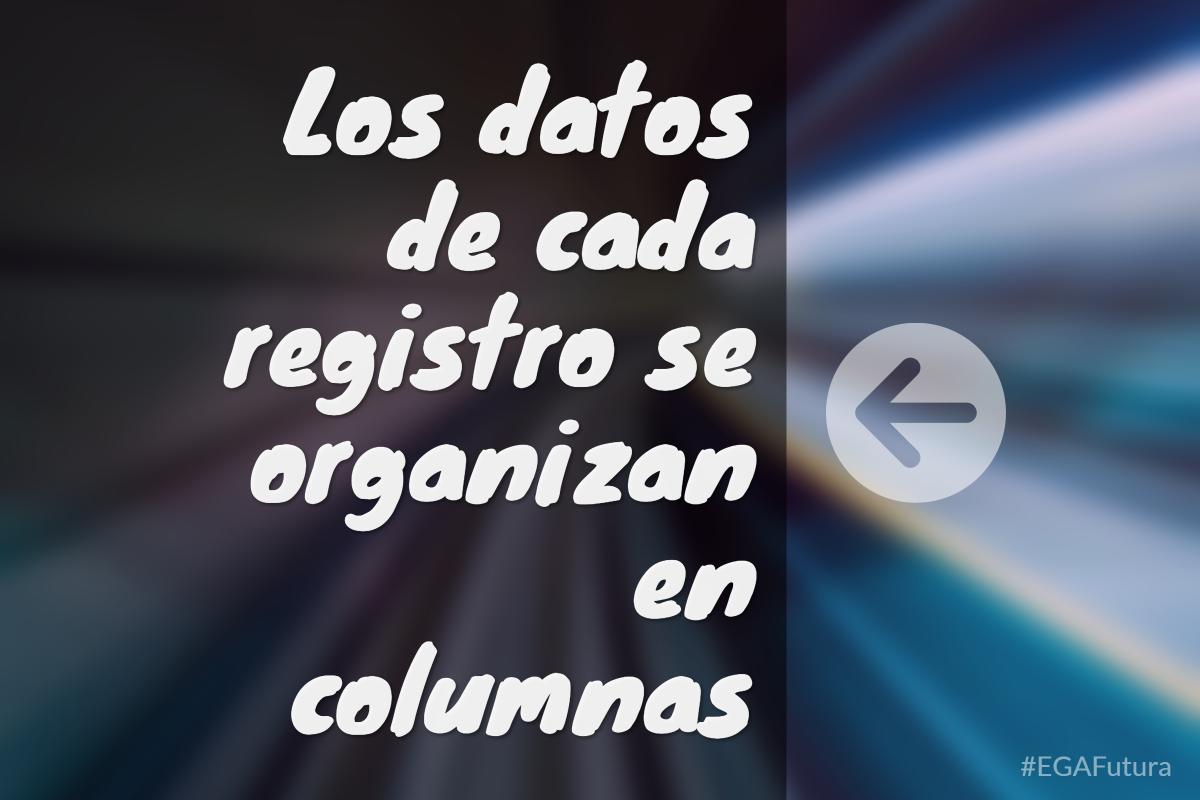 Los datos de cada registro se organizan en columnas