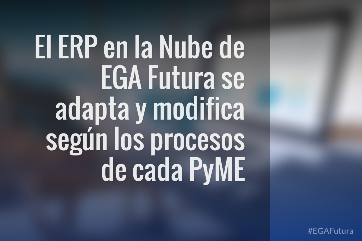 El ERP en la Nube de EGA Futura se adapta y modifica seg煤n los procesos de cada PyME