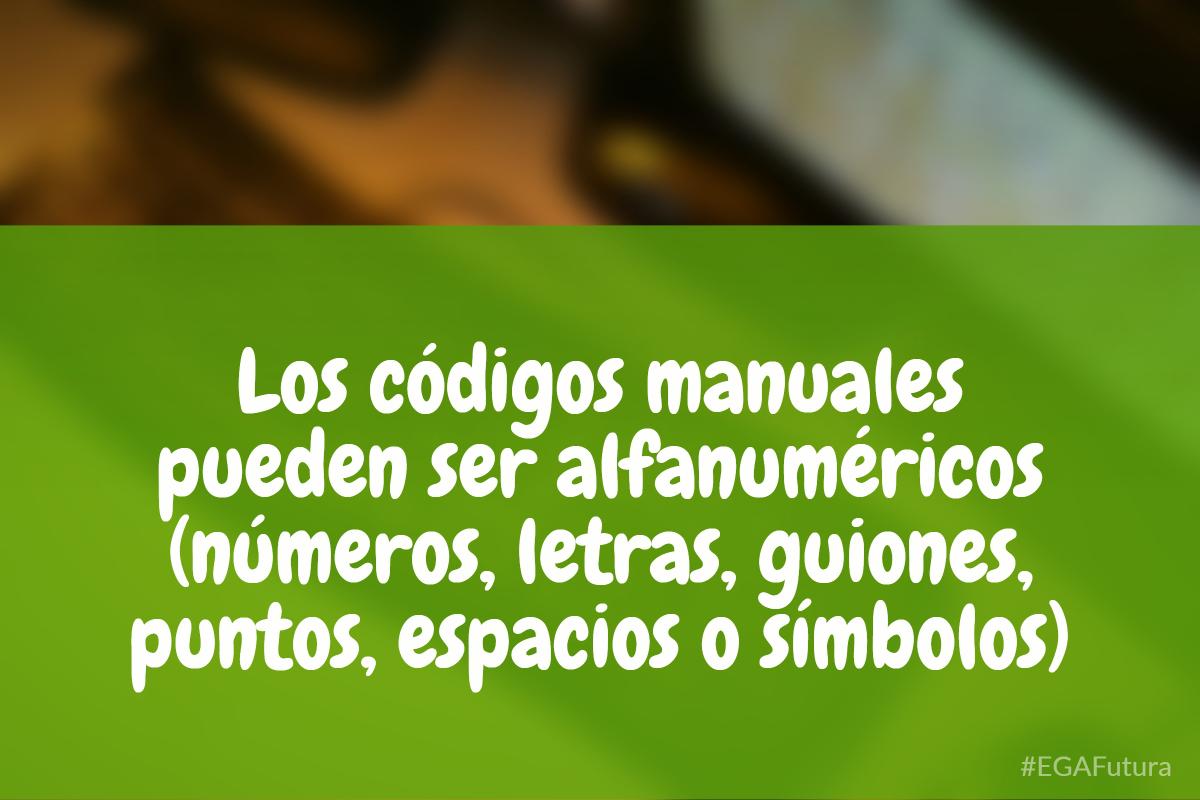 Los c贸digos manuales pueden ser alfanum茅ricos (n煤meros, letras, guiones, puntos, espacios o s铆mbolos).
