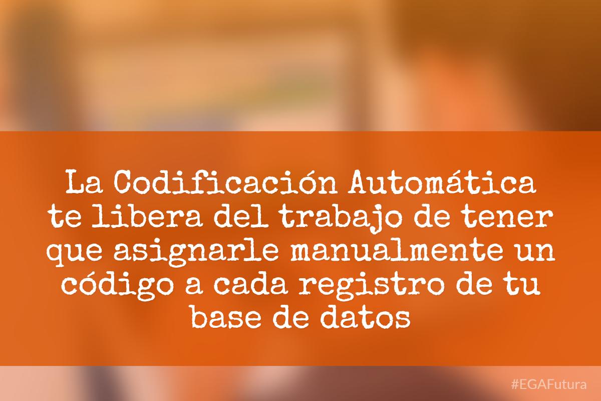 La Codificaci贸n Autom谩tica te libera del trabajo de tener que asignarle manualmente un c贸digo a cada registro de tu base de datos