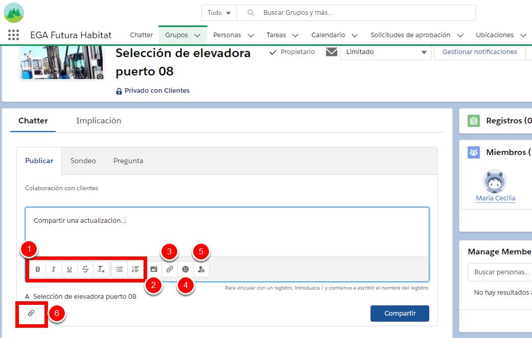 Opciones de edición de texto, menciones, Links y archivos adjuntos en Chatter. CRM Nube