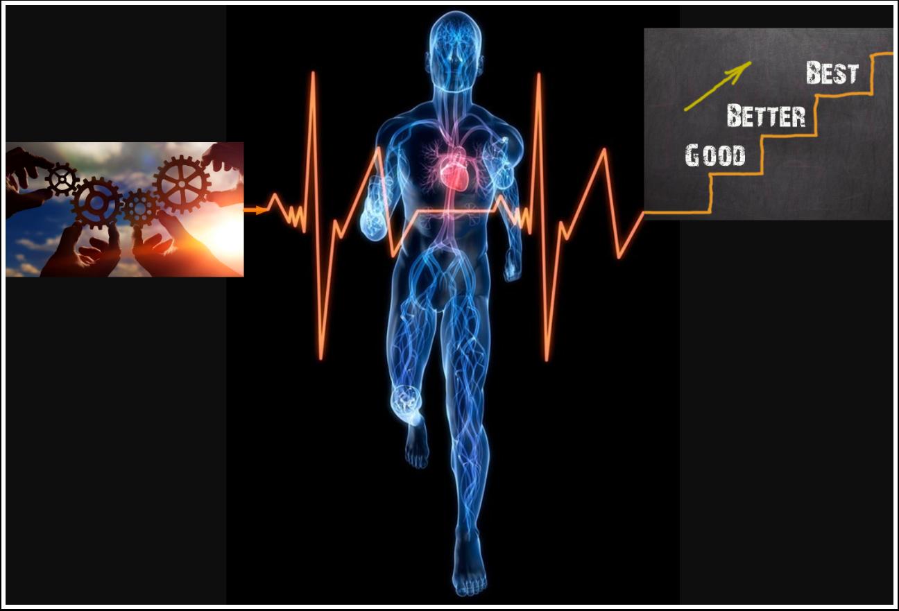 Chatter sistema circulatorio Plataforma EGA Futura ERP nube