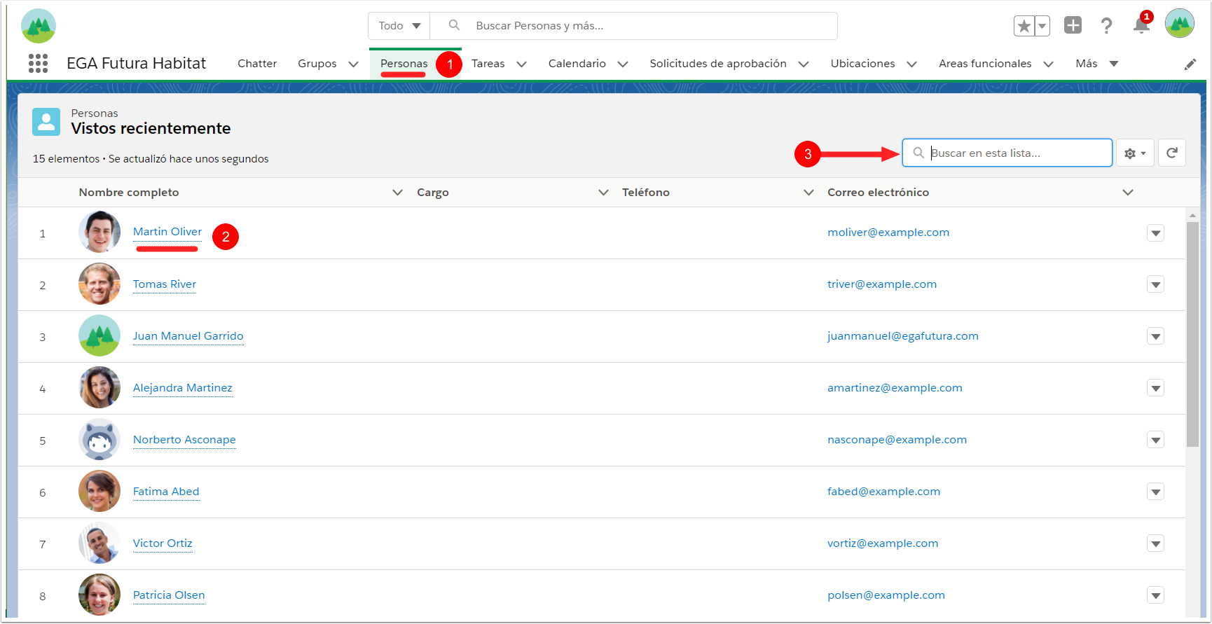 Lista perfiles usuario objeto Personas Plataforma EGA Futura ERP nube