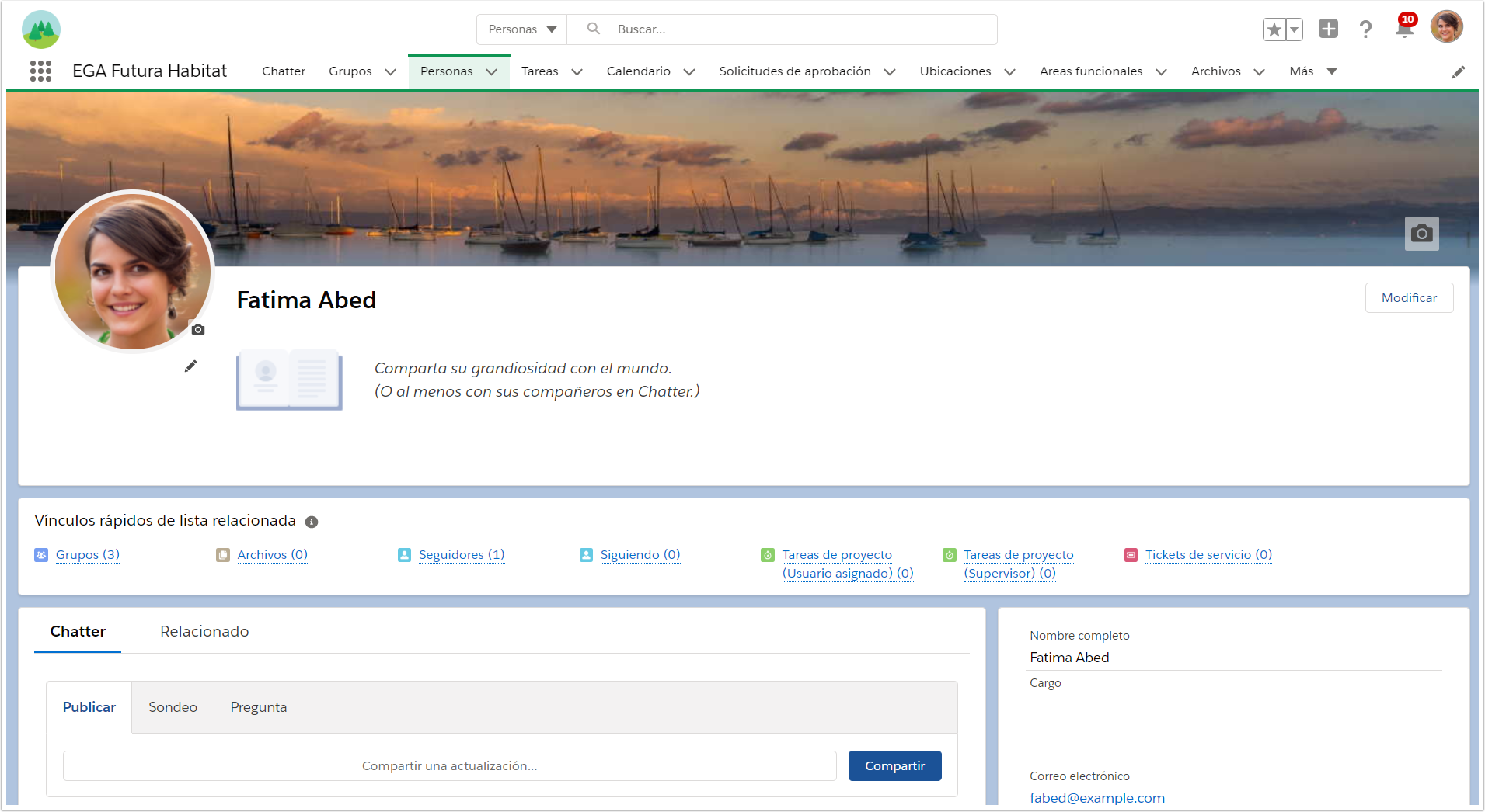 Perfil usuario persona personalizar Chatter EGA Futura ERP nube