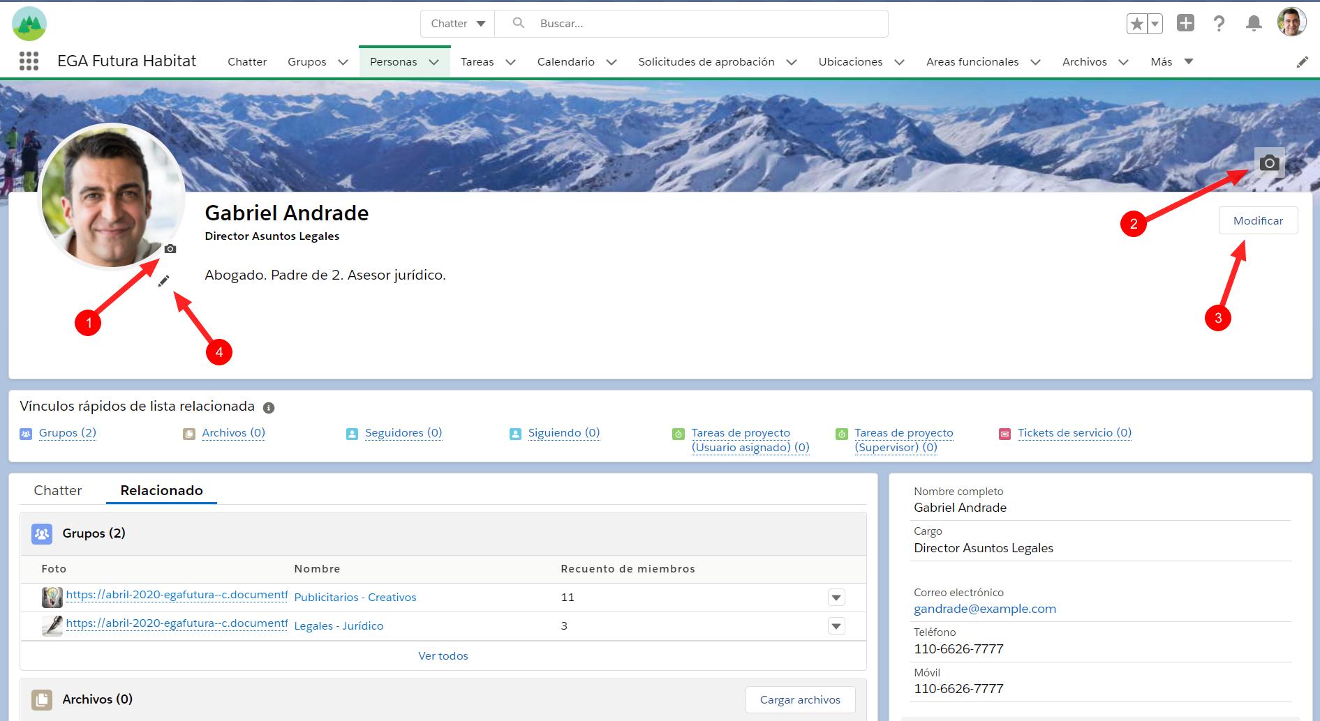 pagina Perfil usuario Plataforma EGA Futura ERP nube
