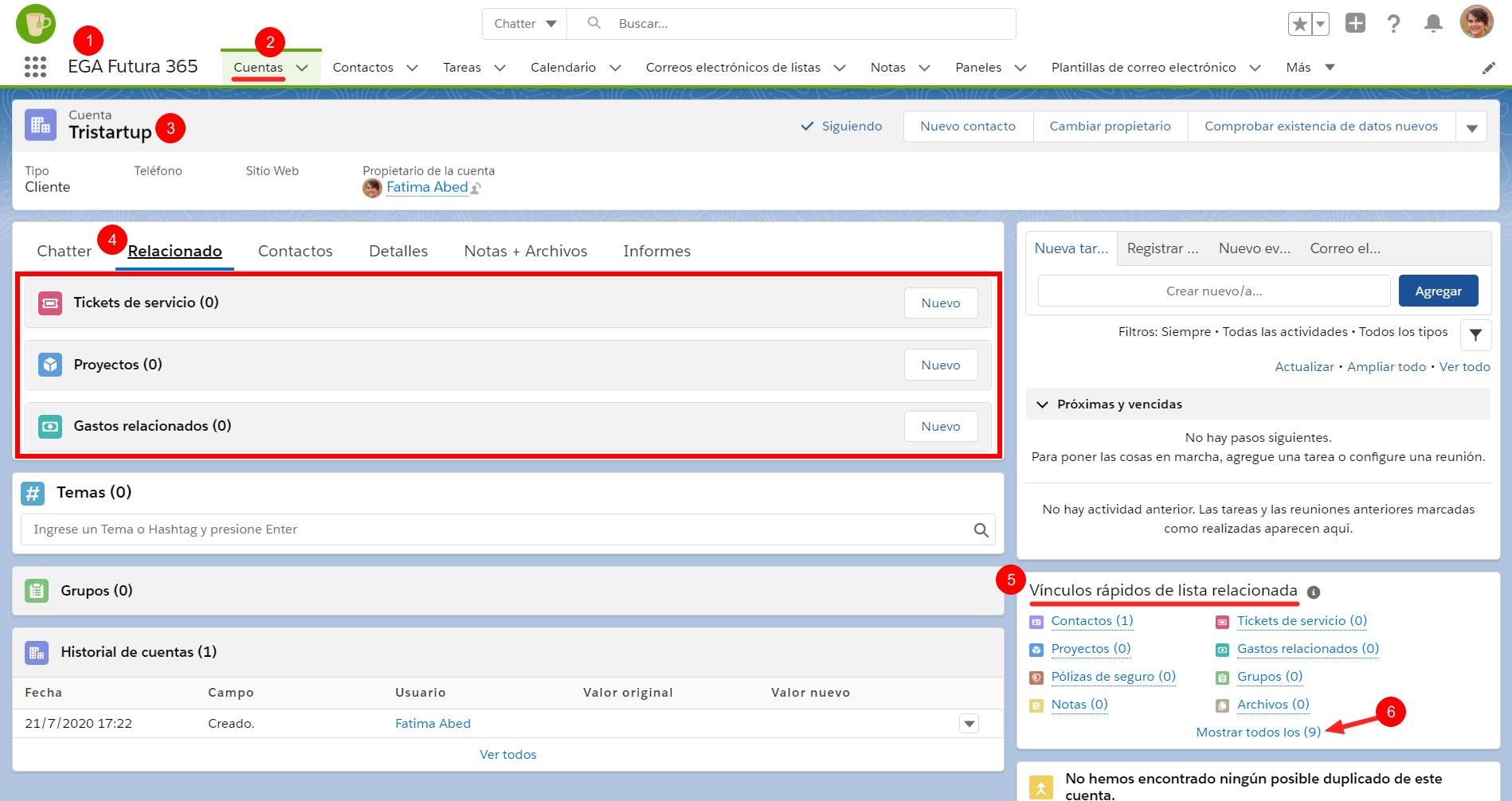 Tarjetas listas relacionadas cuenta contacto related list EGA Futura ERP nube