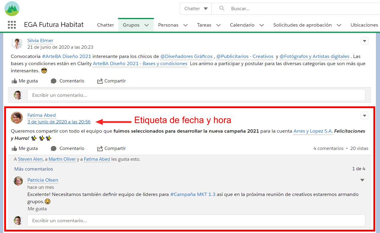 Etiqueta de fecha y hora publicacion Chatter EGA Futura ERP nube
