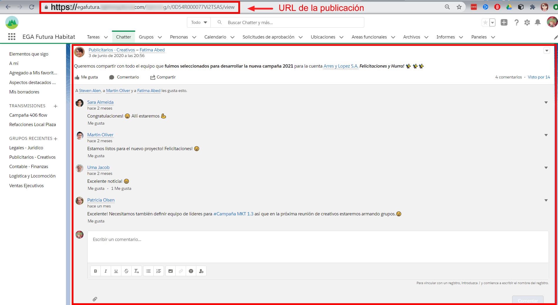 URL unico de una publicación de Chatter comentarios EGA Futura ERP nube