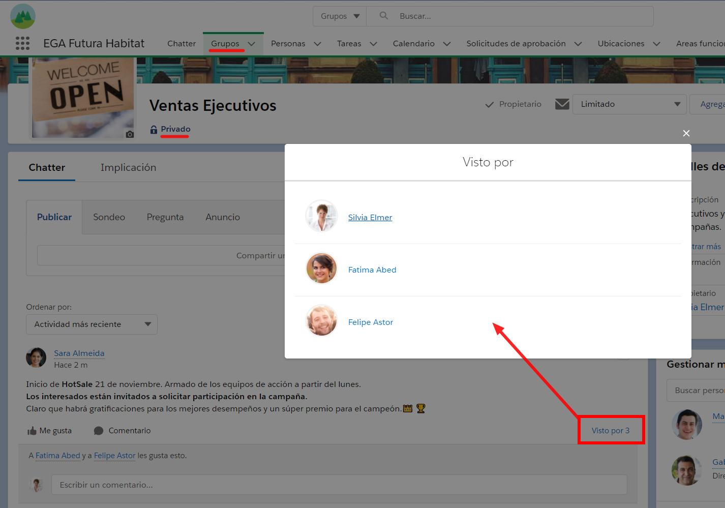 Visto por cantidad usuarios visualizan publicacion Chatter EGA Futura ERP nube