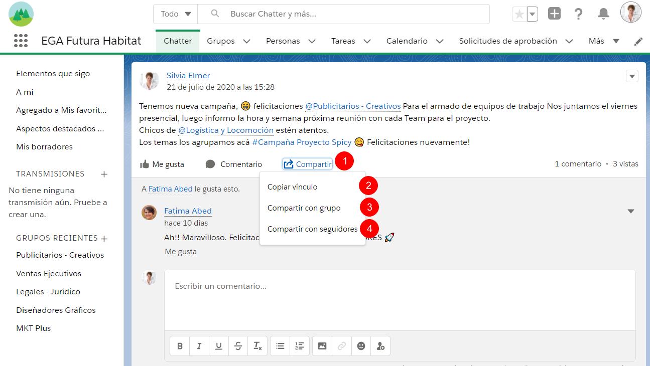 Boton Compartir publicacion Chatter EGA Futura ERP nube