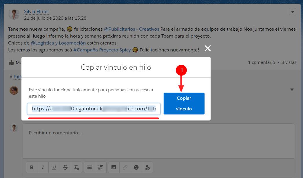Boton copiar vinculo compartir publicacion Chatter EGA Futura ERP nube