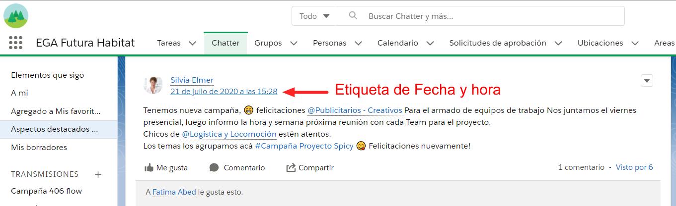 Vinculo Etiqueta de fecha y hora publicacion Chatter EGA Futura ERP nube