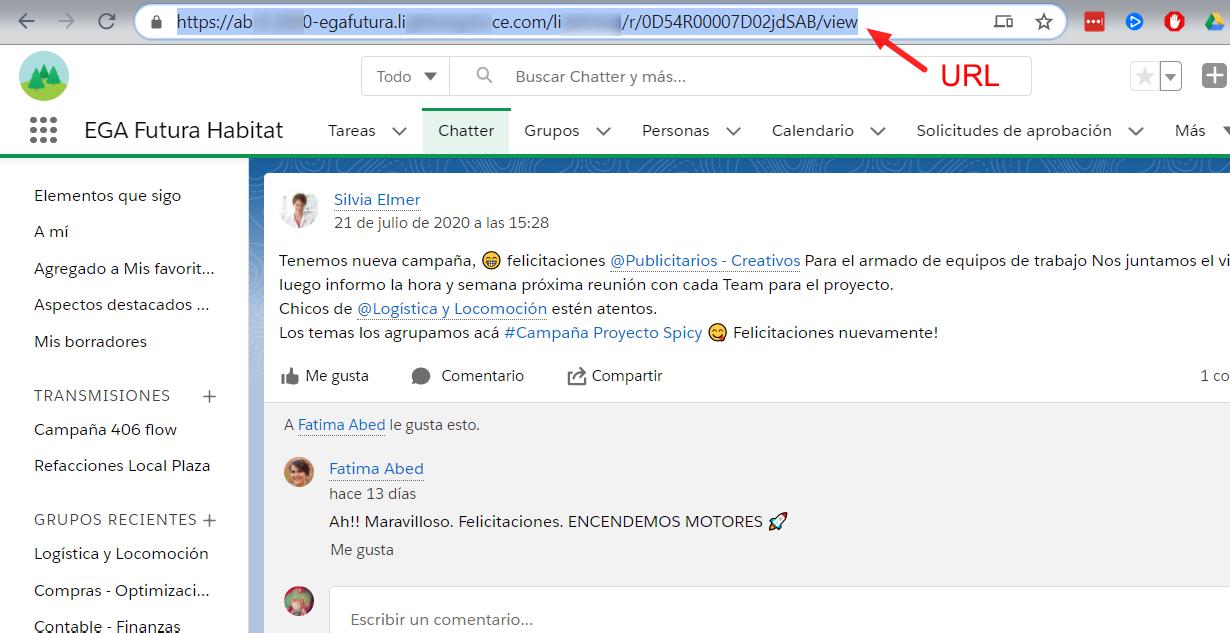URL link unico publicacion Chatter EGA Futura ERP nube