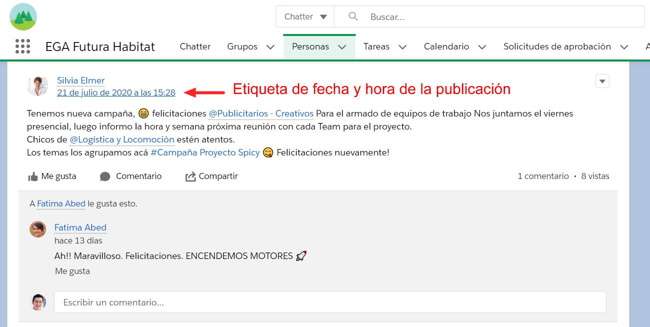 Silenciar publicacion mediante Etiqueta de fecha y hora publicacion Chatter EGA Futura ERP nube