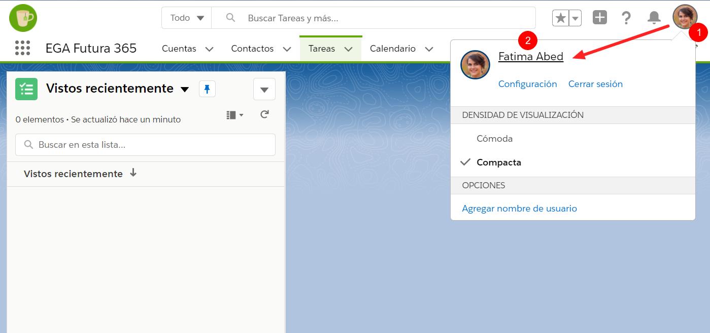 ingreso perfil usuario EGA Futura ERP nube