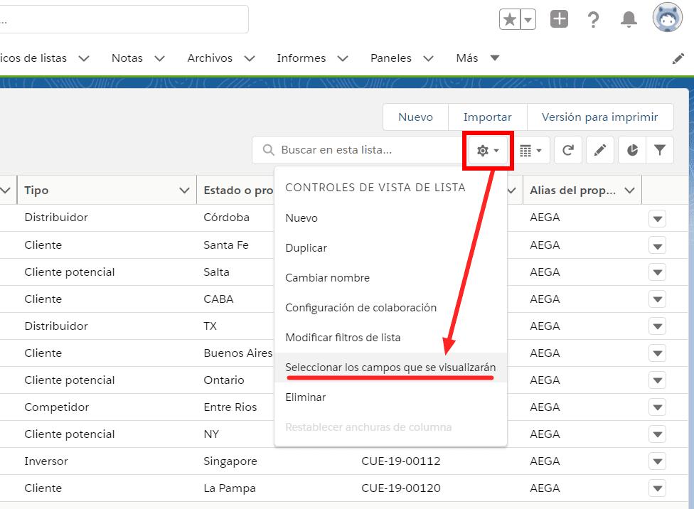 Selecciona los campos que se visualizarán en tu Vista de lista