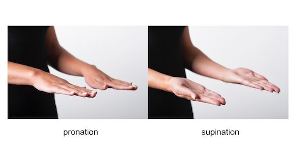 Elbow Arm ExaminationPronation Hand