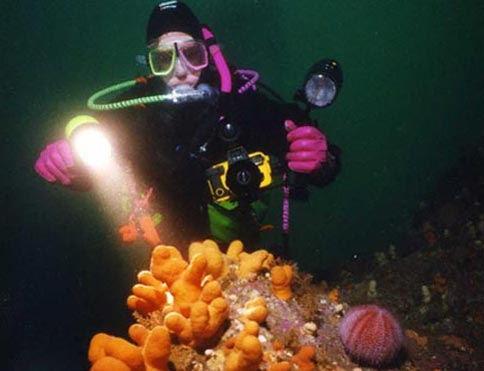Scuba Diving, image courtesy Puffin Dive Centre in Oban