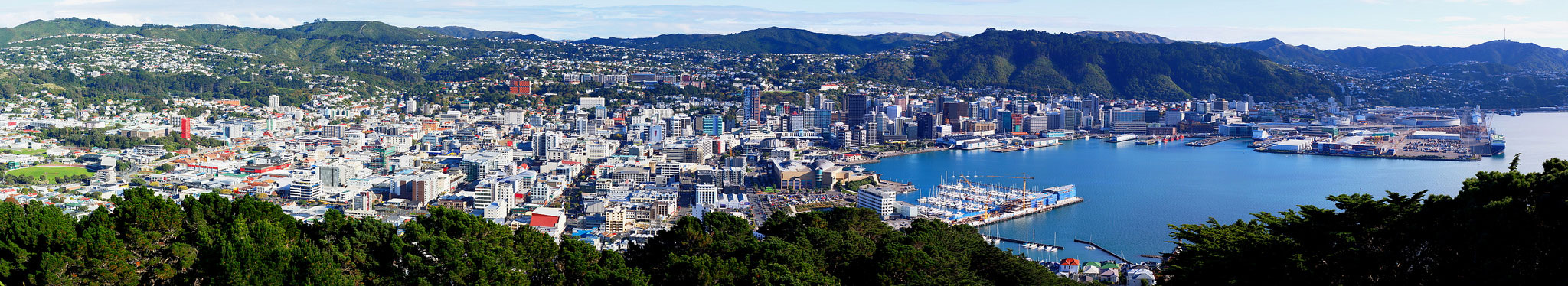Photo of Wellington