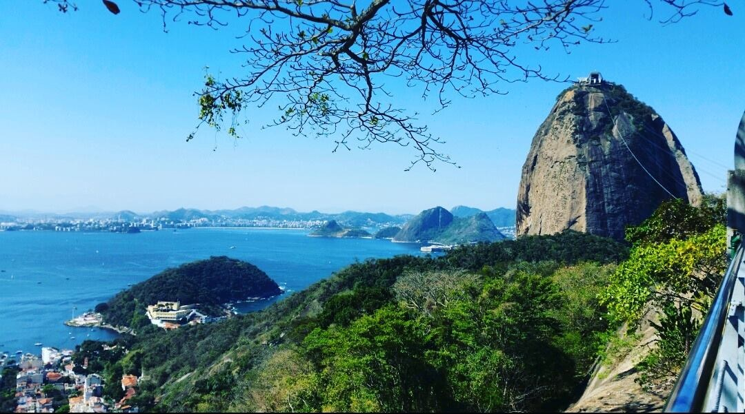 View in Rio