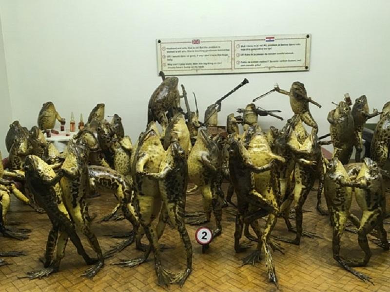Frog museum in Split