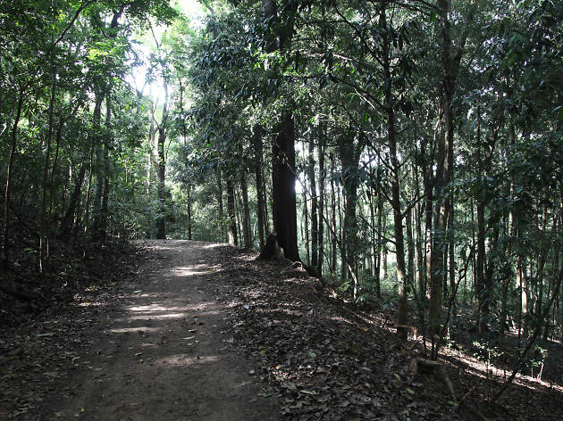 nature reserve in kandy