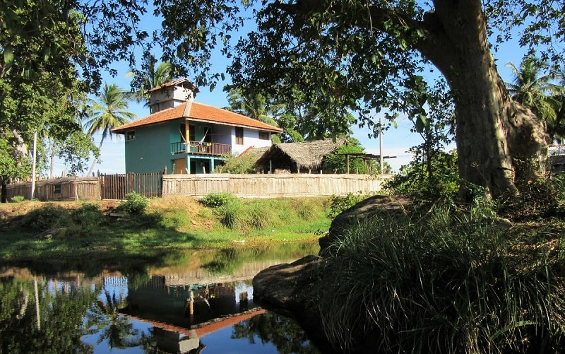 Leaf - Jungle House Lodge in Arugam Bay