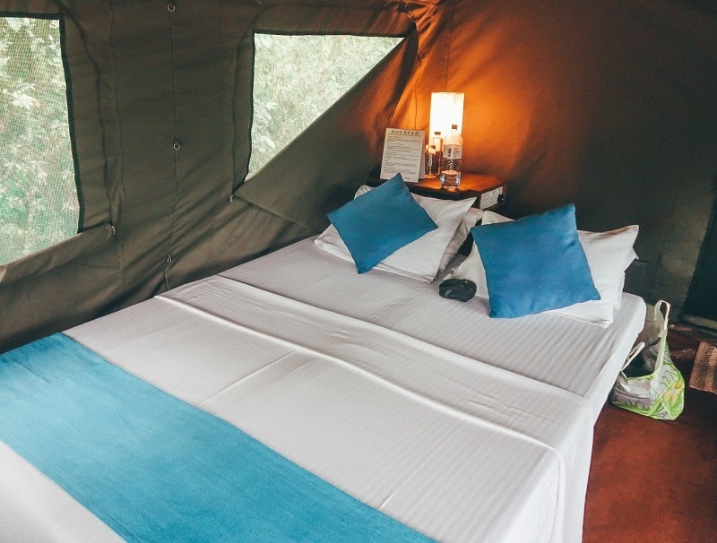 wilpattu national park safari tent