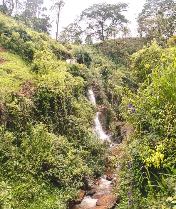 visiting Devon Falls