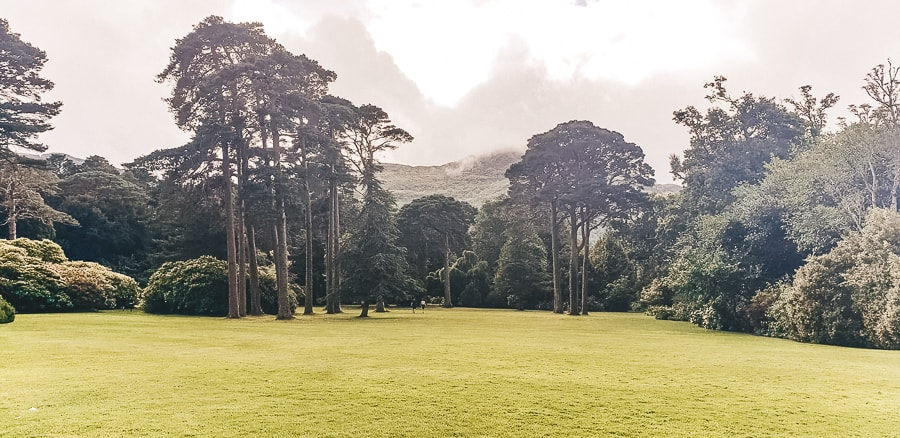 10 Best Things To Do In Killarney {Ireland} Complete 2019