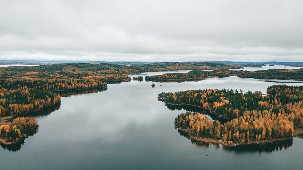 finnsh lakeland