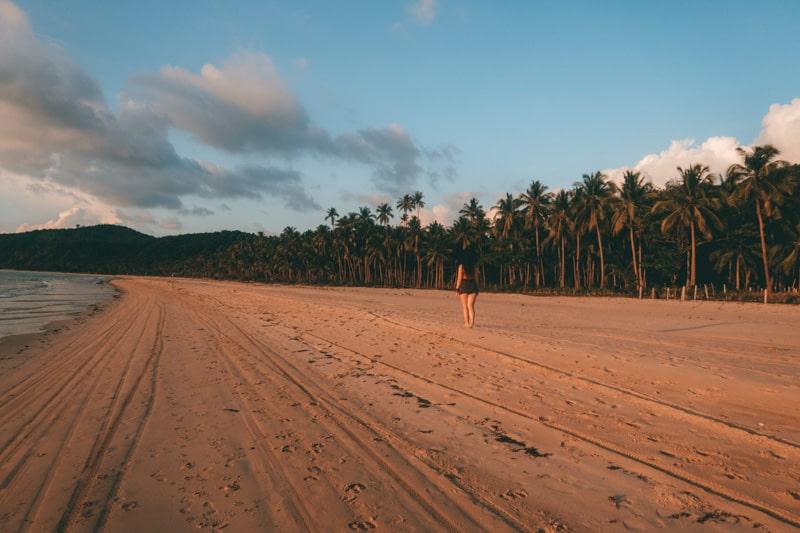 palm trees nacpan beach el nido