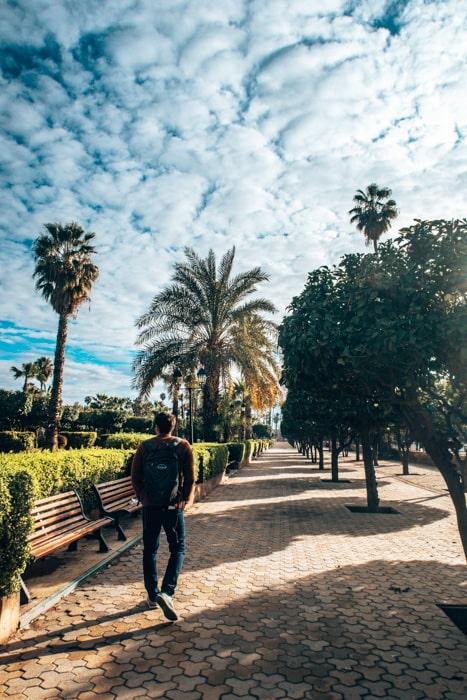 brad in marrakech
