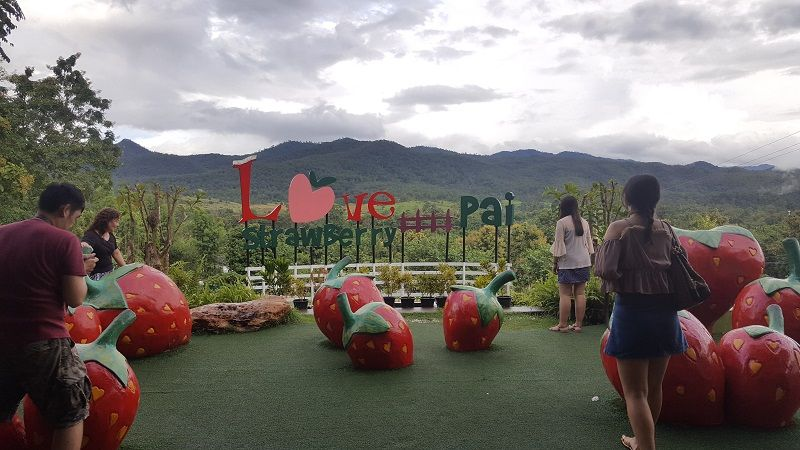 view from Love Strawberry in Pai