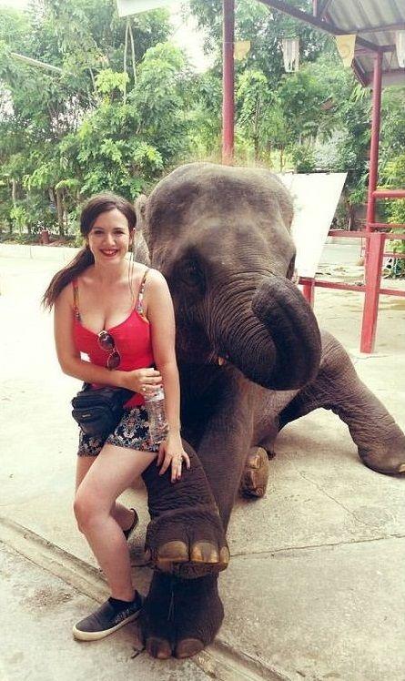 Hutsadin Elephant Foundation in Hua Hin