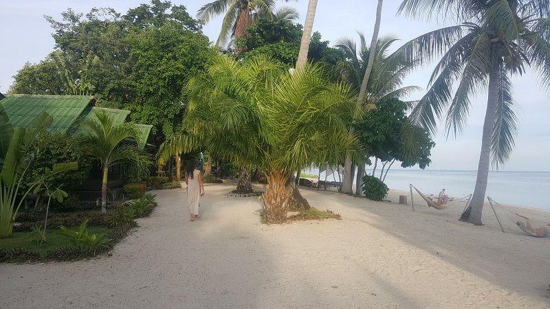 Our beach hotel in Koh Pangan Thailand