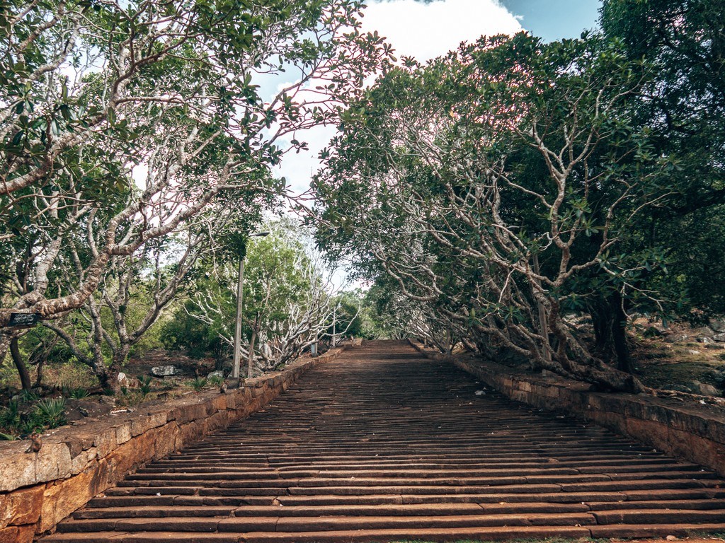 royal botanical gardens in anuradhapura
