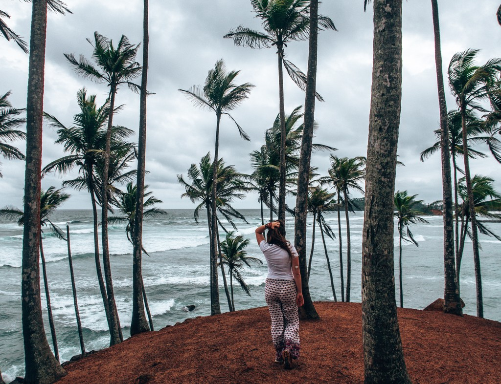 coconut island mirissa