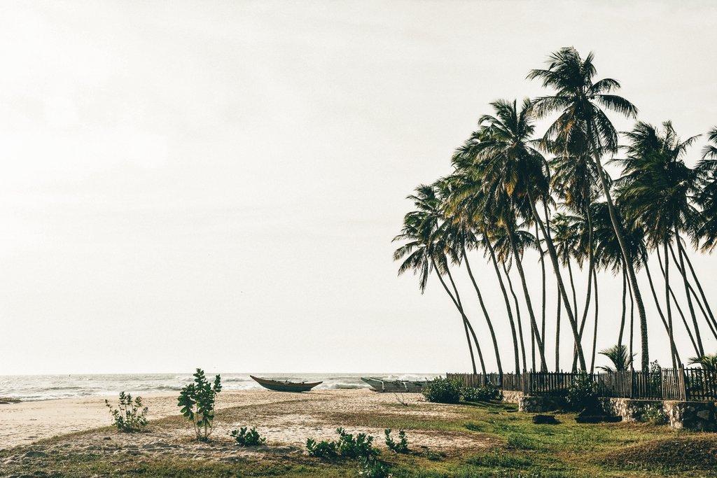 relax in arugam bay