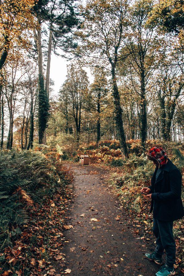 country park at culzean castle
