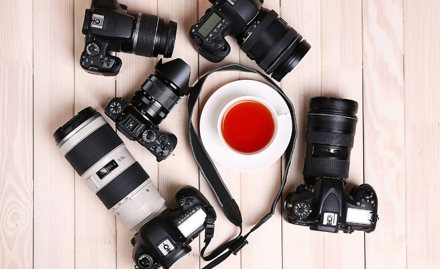choosing between blogging cameras