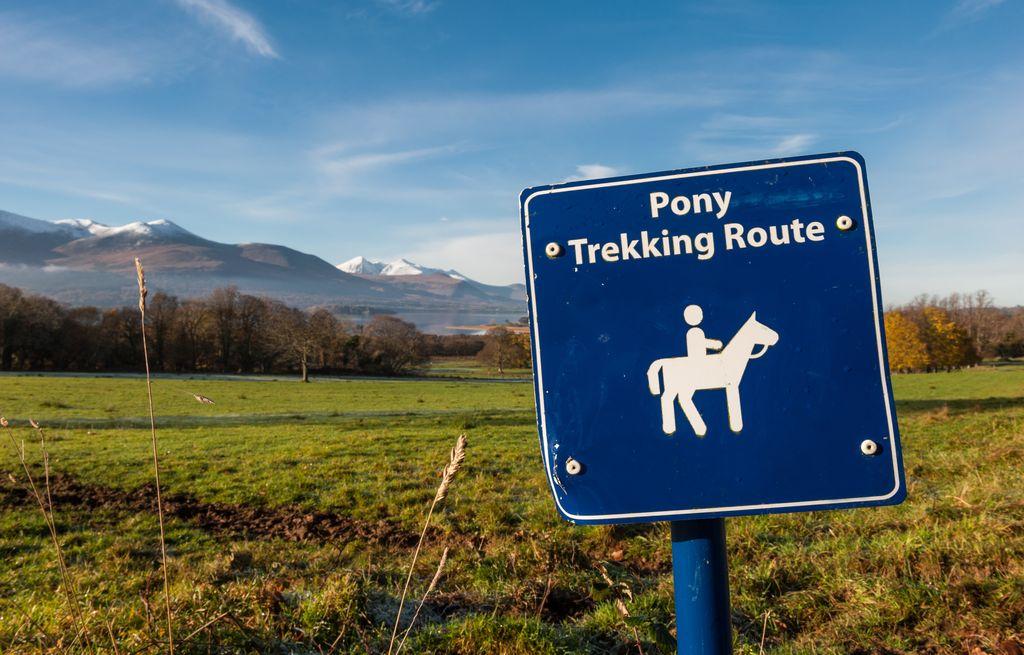 Pony Trekking, Ireland